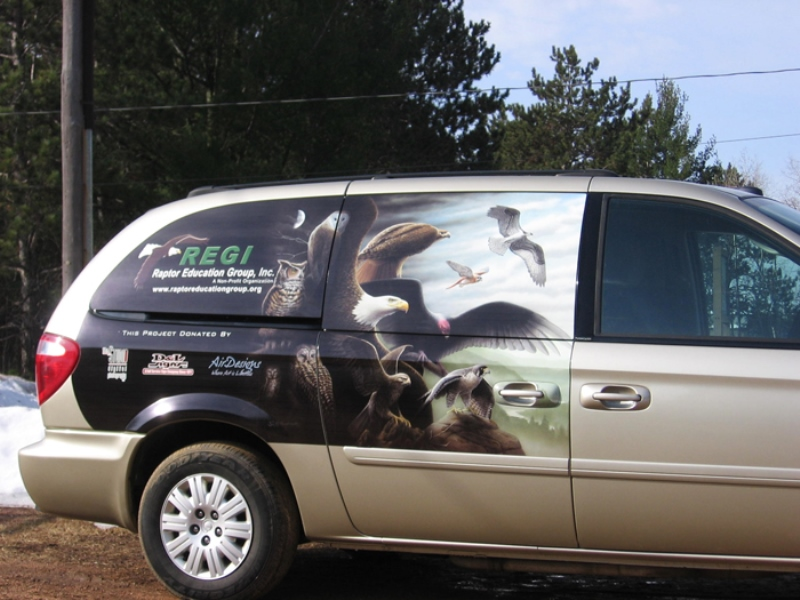 REGI Vehicle Graphics